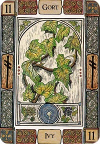 ivy Celtic tree oracle
