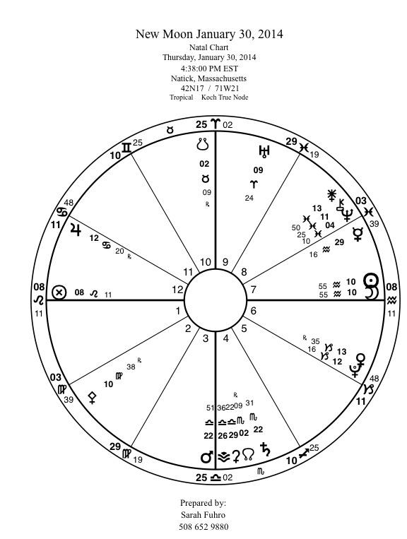 New Moon Mandala New Moon January 30:14