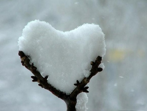 heart with snow