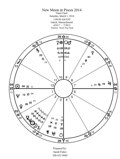 New Moon in Pisces 2014