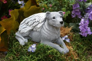 terrier angel