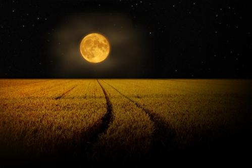 full_corn_moon