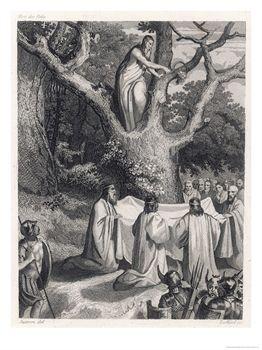 druids and mistletoe