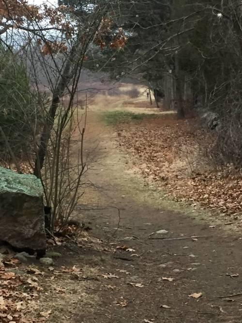 greenways-path