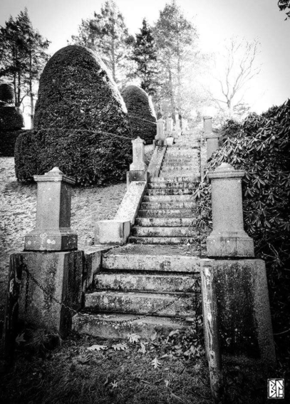 Stairs at Wellesley b&w BL