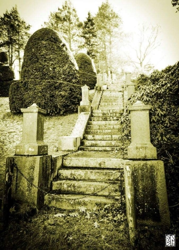 Stairs at Wellesley sepia BL