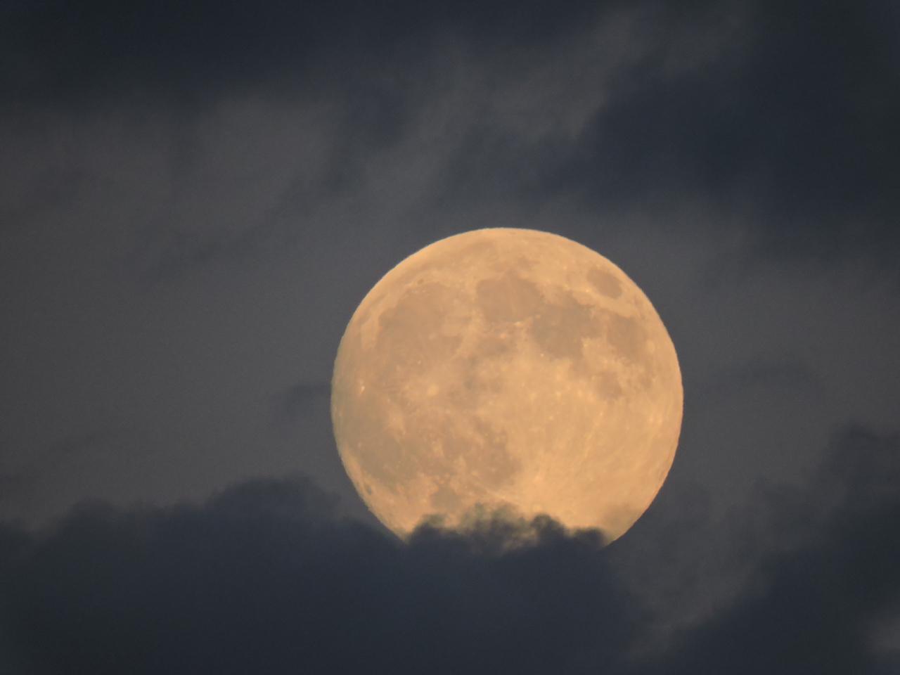 Full Moon from Ginger