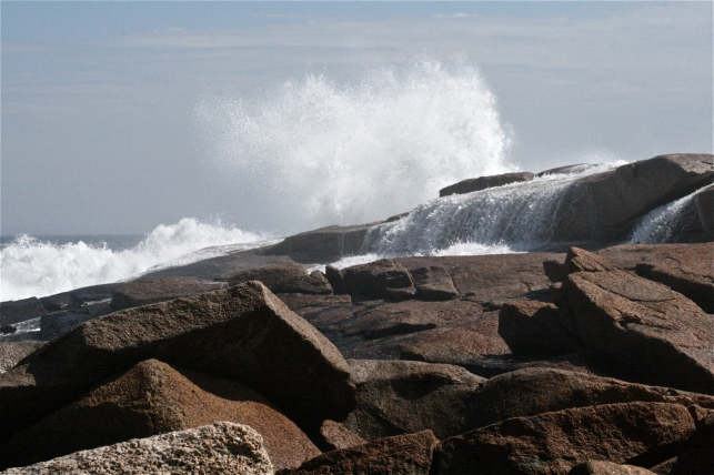 Halibut Point-after the hurricane