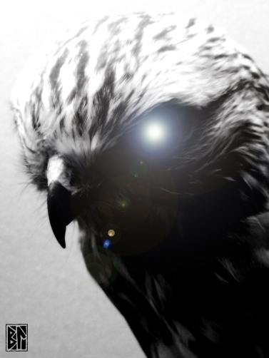 hawk with spirit eye BL.jpg
