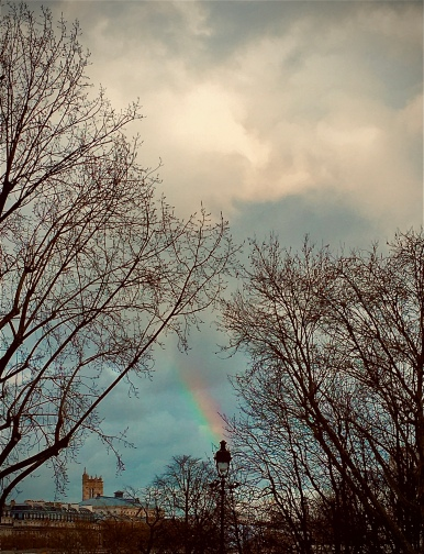 Paris Rainbow .jpg