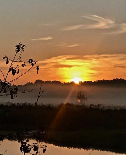 dawn on the Sudbury River