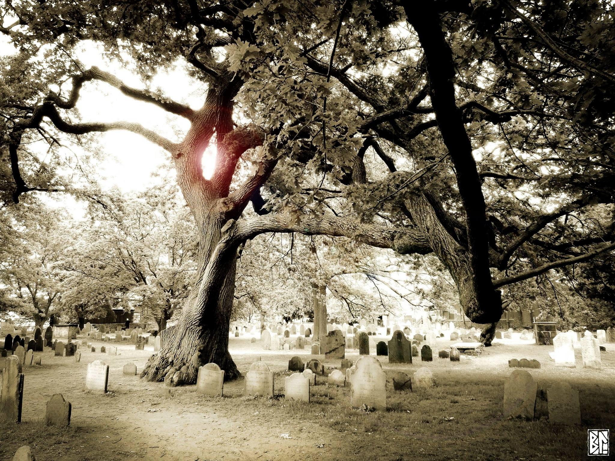 in Salem's gravyard BL