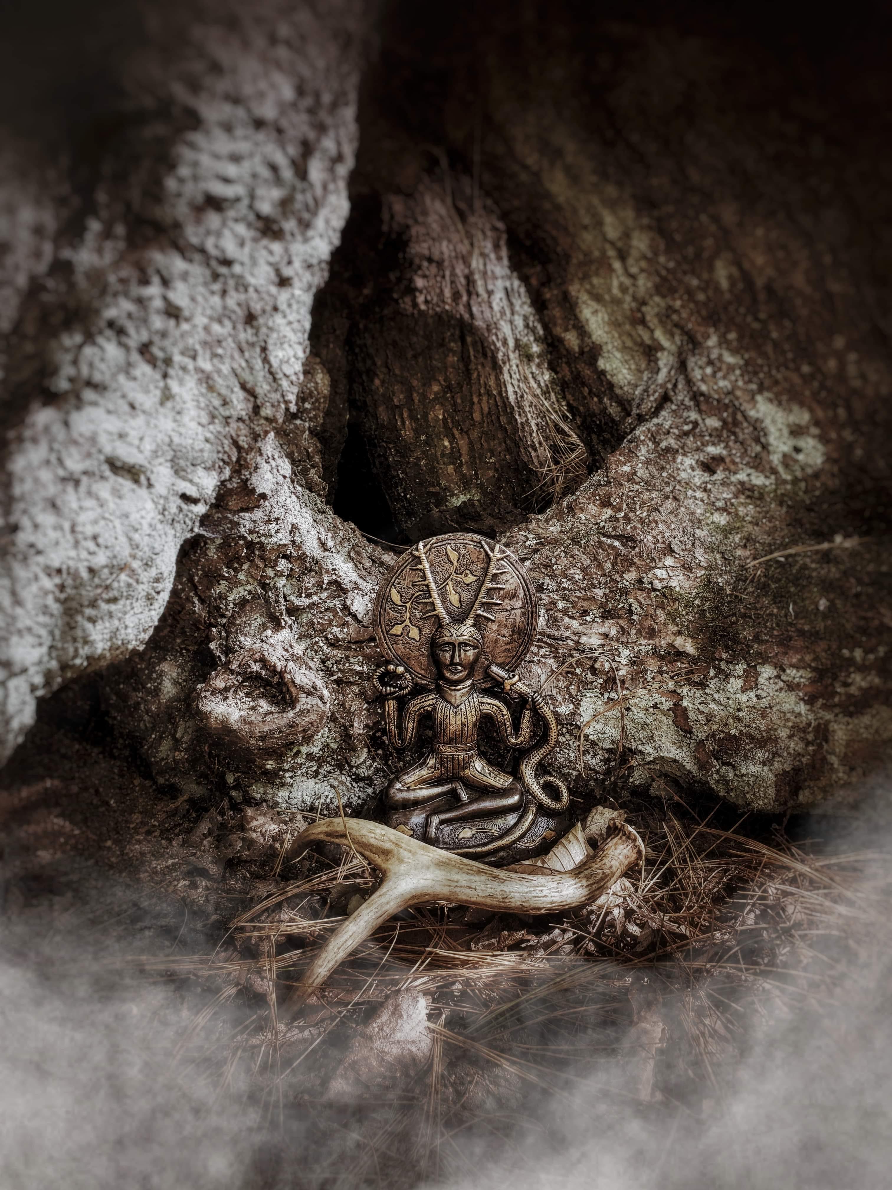 Cerunos antler and birch tree