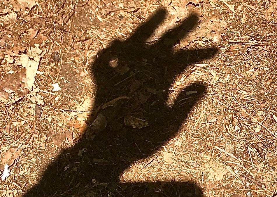 shadow hand – Version 2